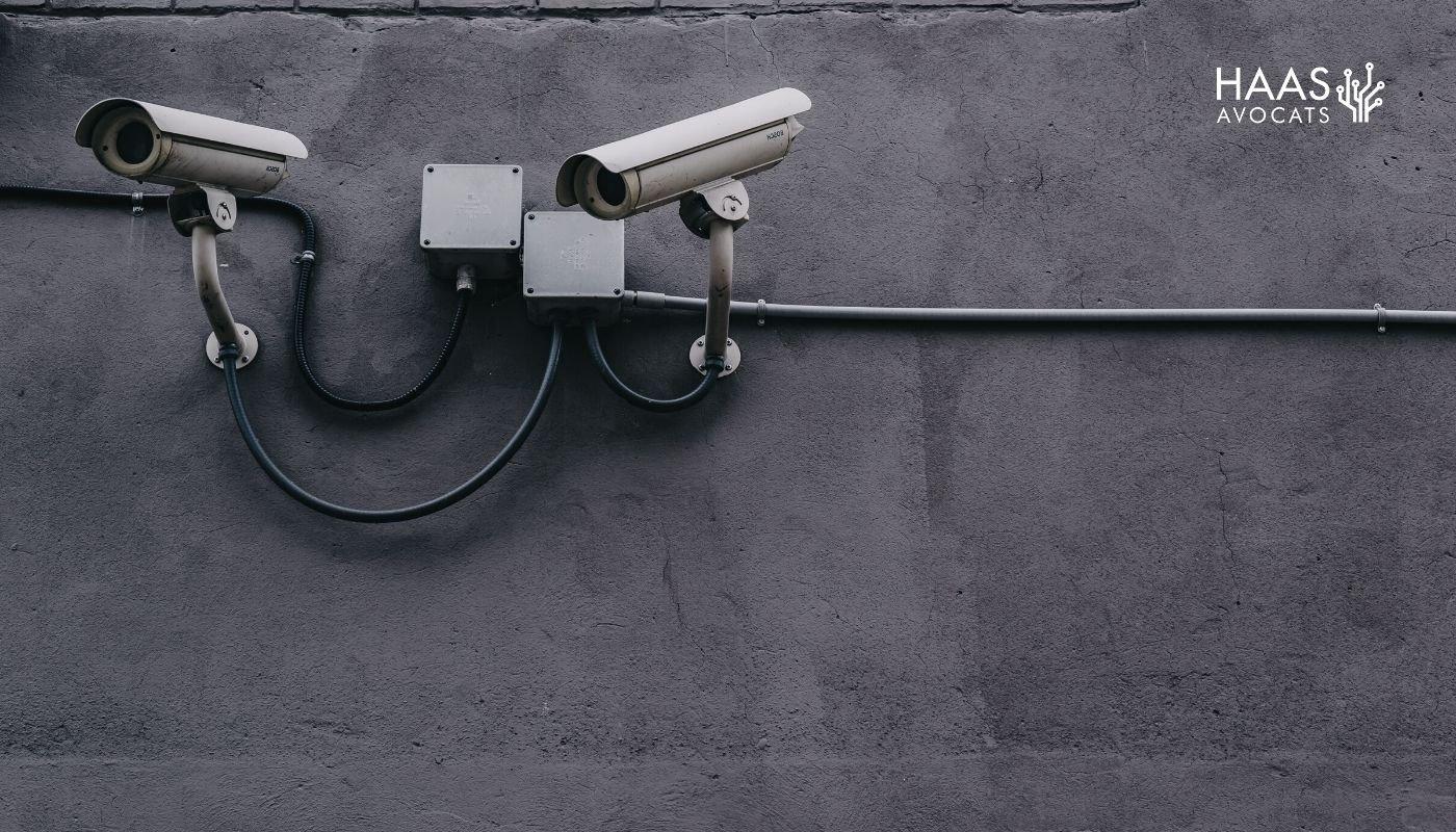 Le Conseil Constitutionnel admet la surveillance des réseaux sociaux